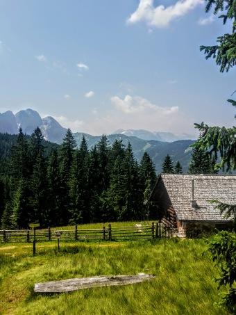 Blick auf Gosaukamm & Tennengebirge