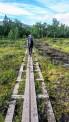 Und immer wieder Holzplanken