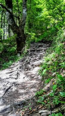 Über den Jägersteig bergauf