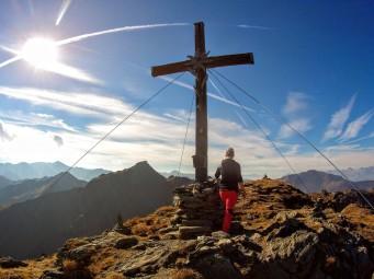 Edelweiss am Gipfelkreuz, dahinter der Marchkopf