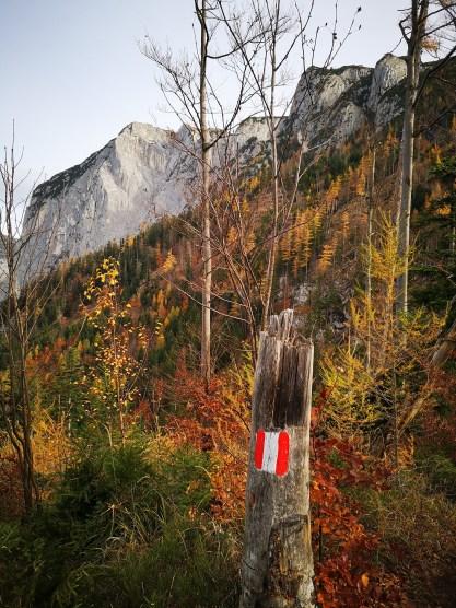 Blick zum Gipfelkreuz