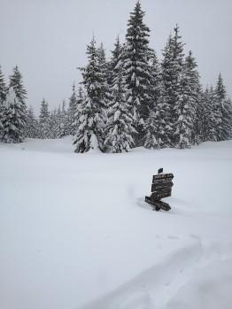 Schnee-Status: hoch