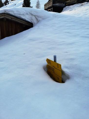 Ja, es liegt noch Schnee (Talschluss)