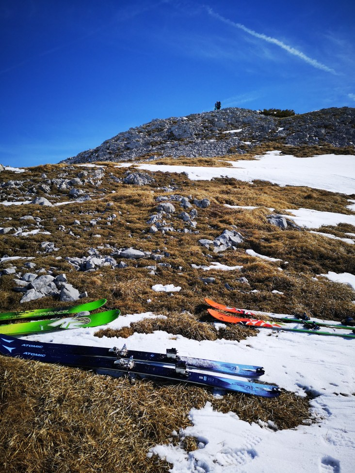 Kleiner Frühlingsgruss - zum Gipfel gehts zu Fuß