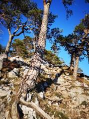 Felsiger Aufstieg zum Gipfel