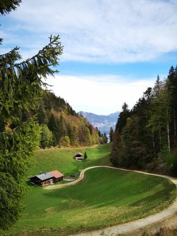 Blick ins Alpbachtal
