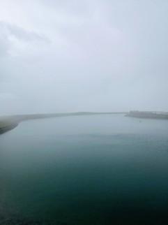 der Teich im Nebel...