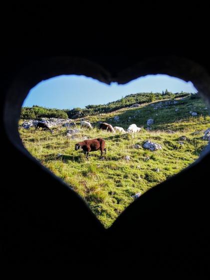 Lampal-Liebe